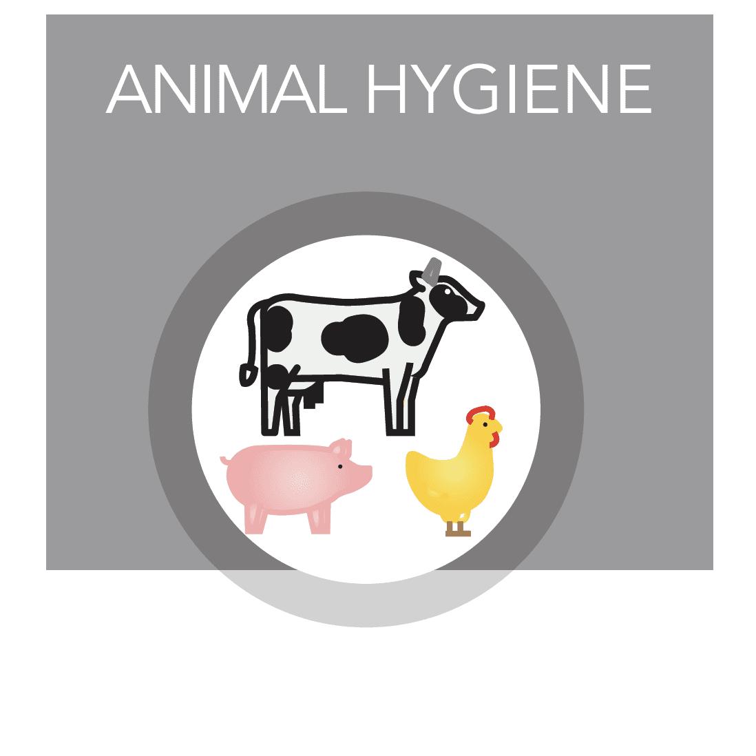animal-hygiene