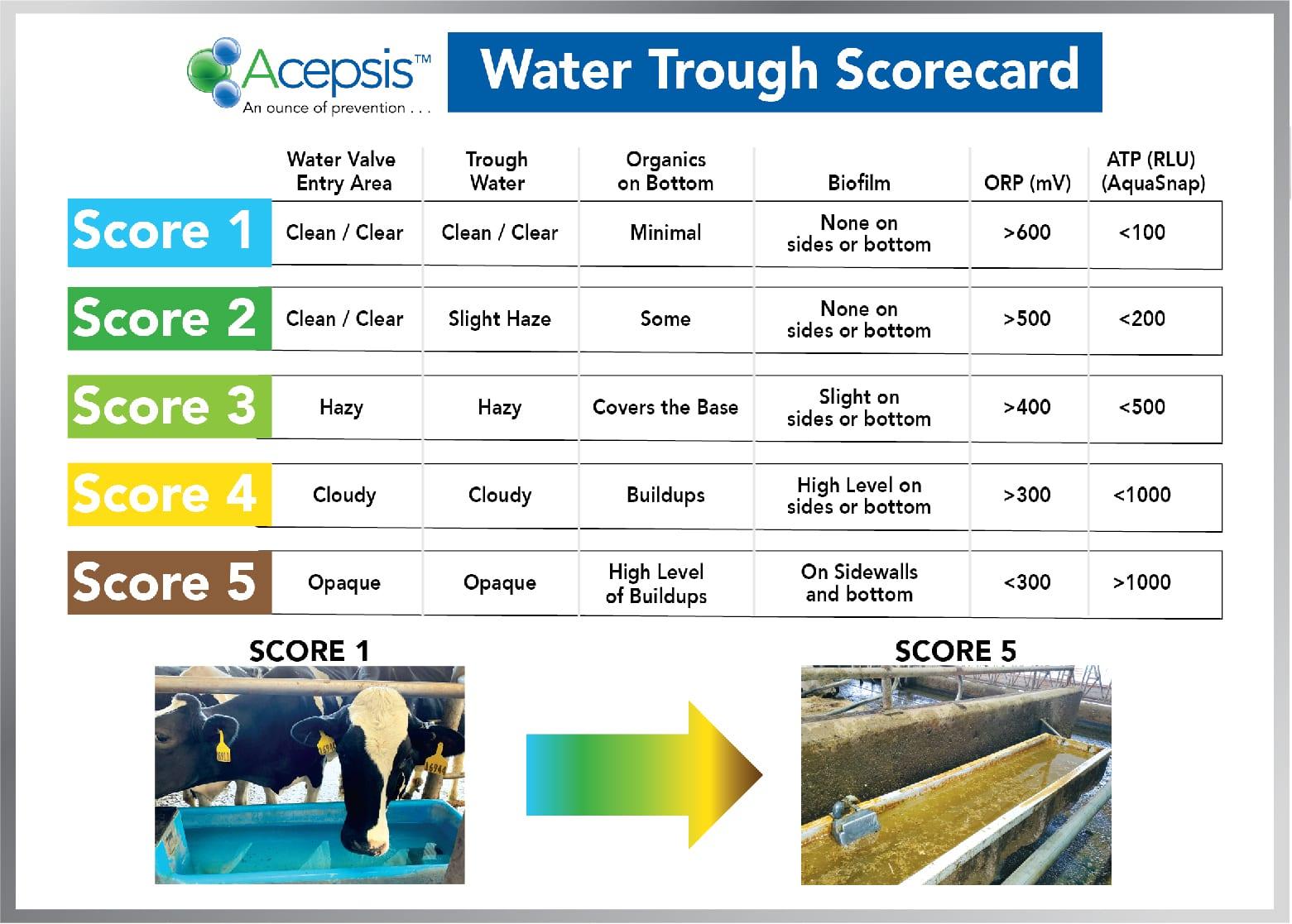 Acepsis Water Trough Scorecard